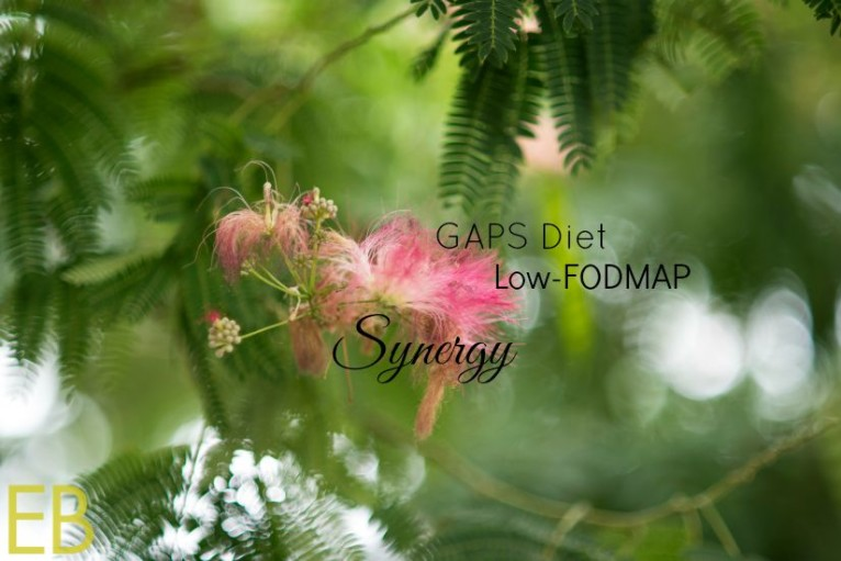GAPS-Diet-Low-FODMAP-Synergy