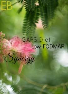 GAPS-Diet-Low-FODMAP-Synergy