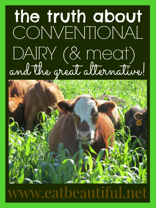 My kids want to know why people eat conventional US-made cheese, ice cream, yogurt, milk, and butter when the cows these products come from are raised in confined animal feeding operations, (referred to as CAFO), and are fed genetically modified grain.