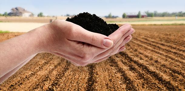 soilinhandsimage
