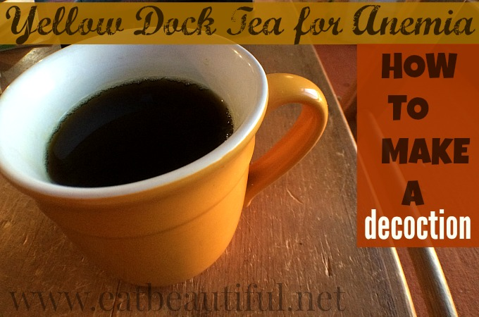 How to Make Yellow Dock Tea for Anemia