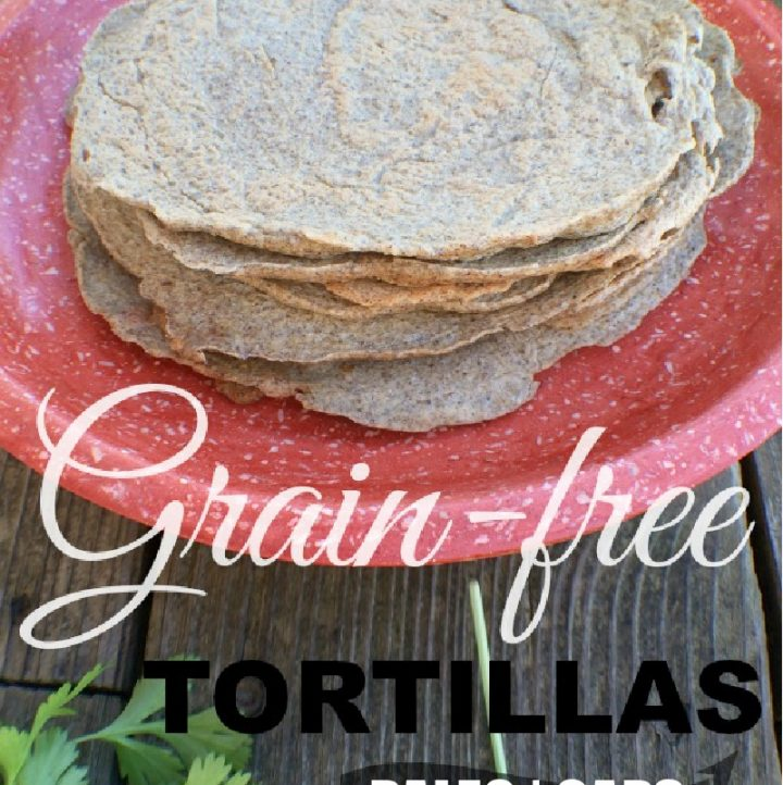 an orange platter or stacked chia-flax tortillas