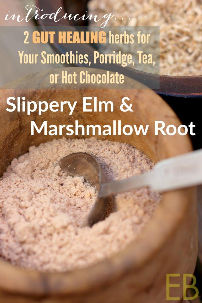 slippery-elm-marshmallow-root