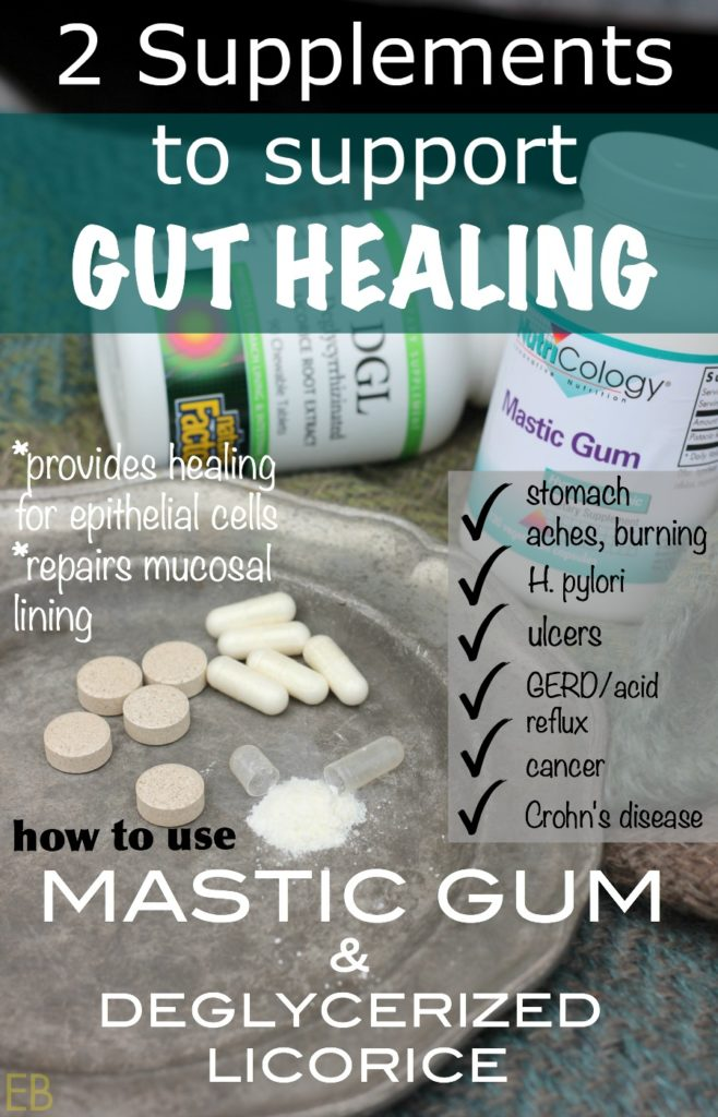 2 Supplements to Support Gut Healing: How to Use Mastic Gum
