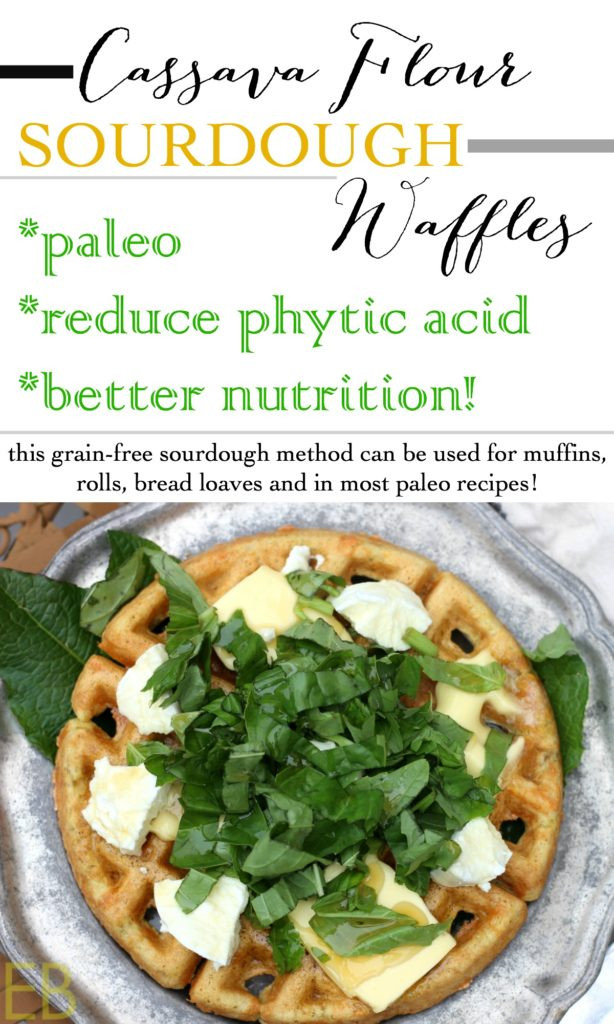 Cassava Flour *Sourdough* Waffles-- reduce phytic acid and increase nutrition, learn how to make grain-free sourdough recipes: delicious and better for you, plus SUCH an easy method!