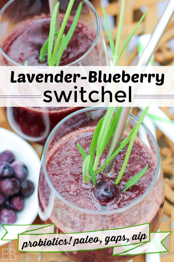 This healthy probiotic beverage is super fast to make and will have your family and guests lining up to be refreshed! Full of electrolytes, it's great for digestion and renewing the body. Plus it's delicious!! #switchel #lavender #blueberry #electrolytes #probiotics #ferment #applecidervinegar #ginger