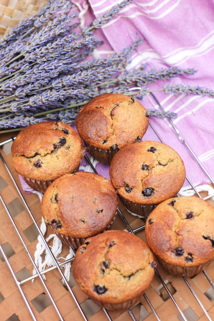 Paleo Blueberry Banana Muffins are the perfect breakfast, snack or treat; or eat alongside any meal. They're high in protein and prebiotics and just downright delicious! #paleo #muffins #blueberry #banana #resistantstarch #prebiotics #protein