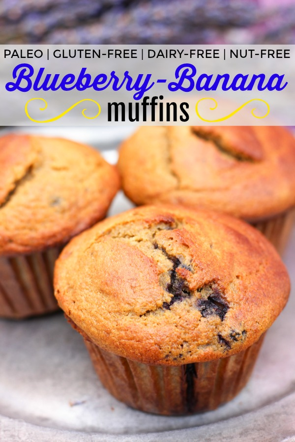 Paleo Blueberry Banana Muffins are the perfect breakfast, snack or treat; or eat alongside any meal. They're high in protein and prebiotics and just downright delicious! #paleo #muffins #blueberry #banana #resistantstarch #prebiotics #protein #nutfree #dairyfree