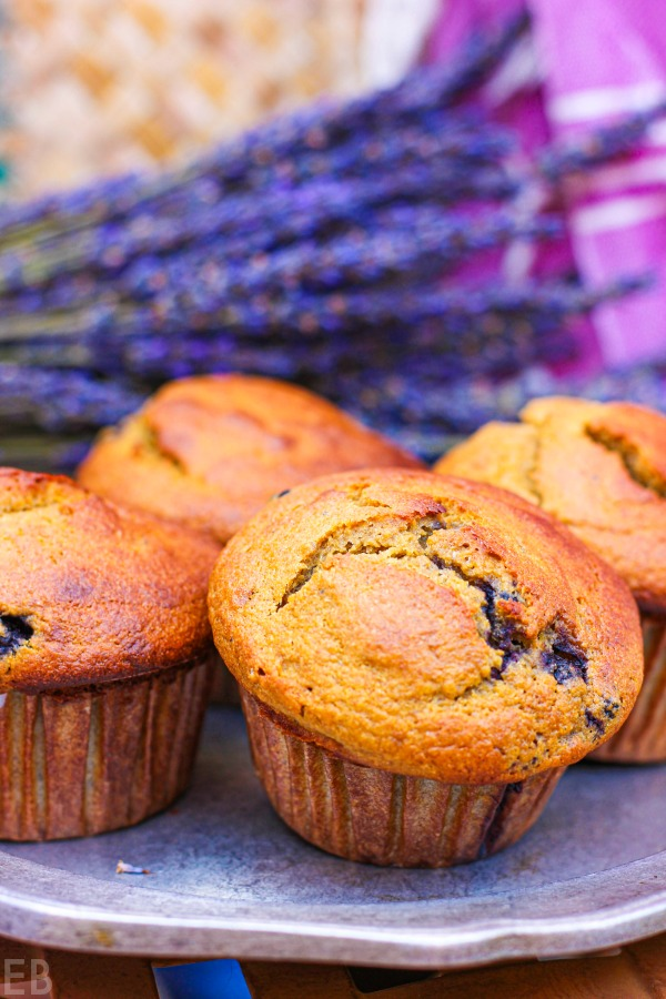 several paleo blueberry-banana muffins on a plate