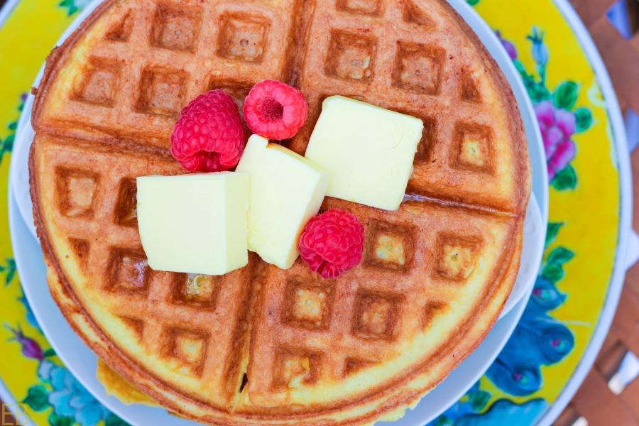 Keto Coconut Flour Waffles {nut-free, stevia only, GAPS, low-carb, Paleo} #keto #waffles #coconutflour #nutfree #stevia #paleo #gaps #lowcarb #ketobreakfast #gapsdiet #lowcarbbreakfast