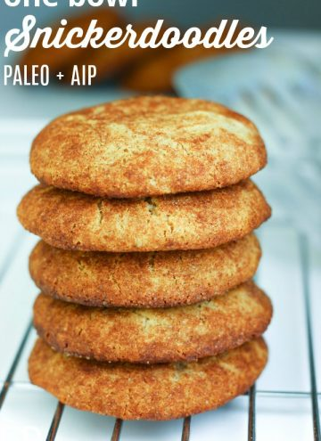 stack of aip snickerdoodles