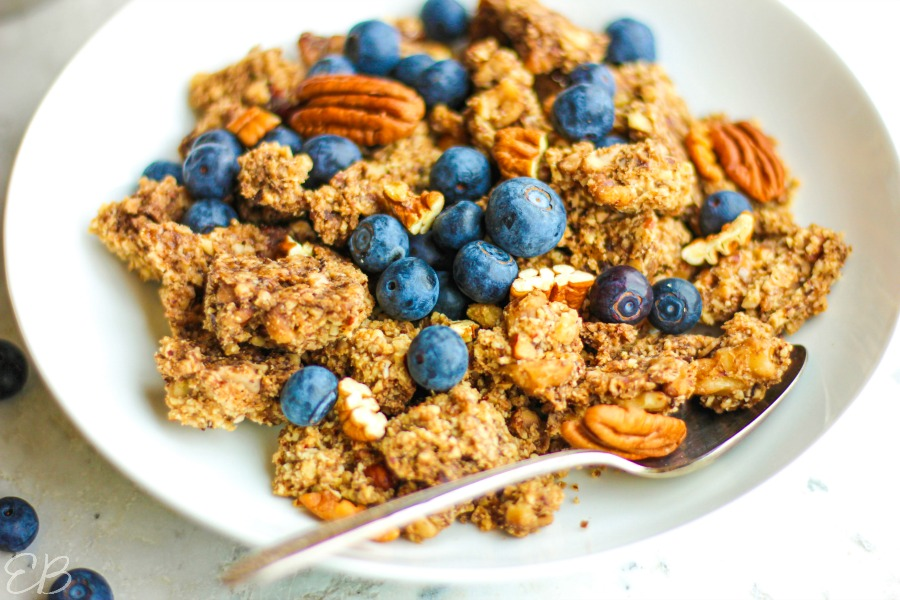 side view of granola with blueberries