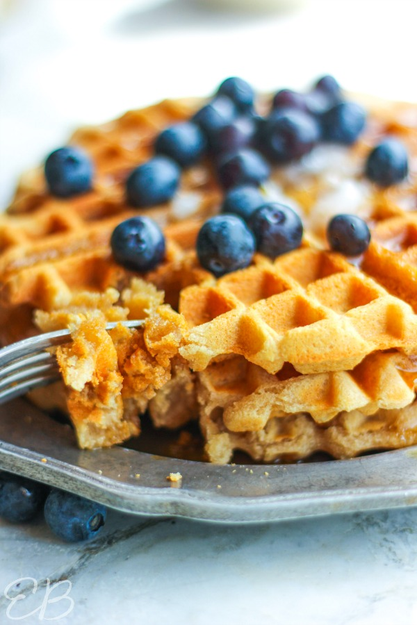 side angle view of paleo aip cassava waffle with blueberries on top