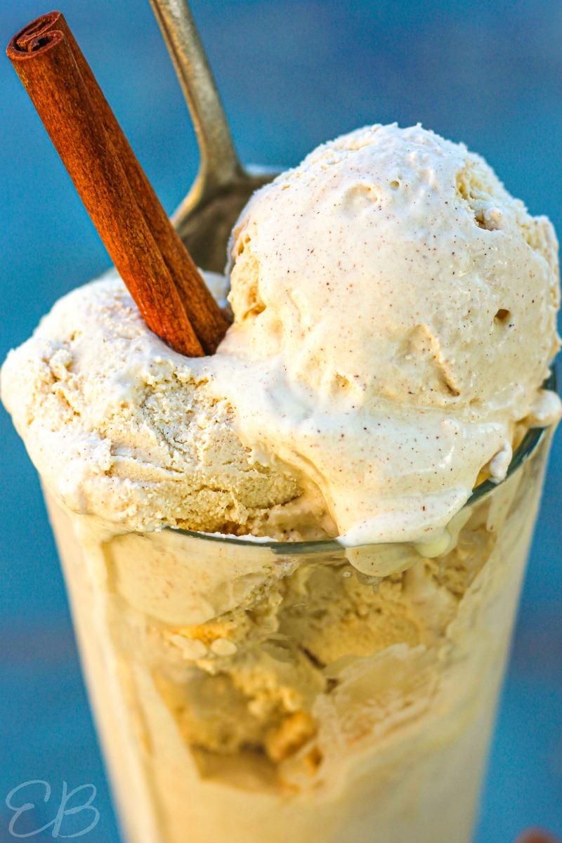 close up view of cinnamon ice cream with cinnamon stick