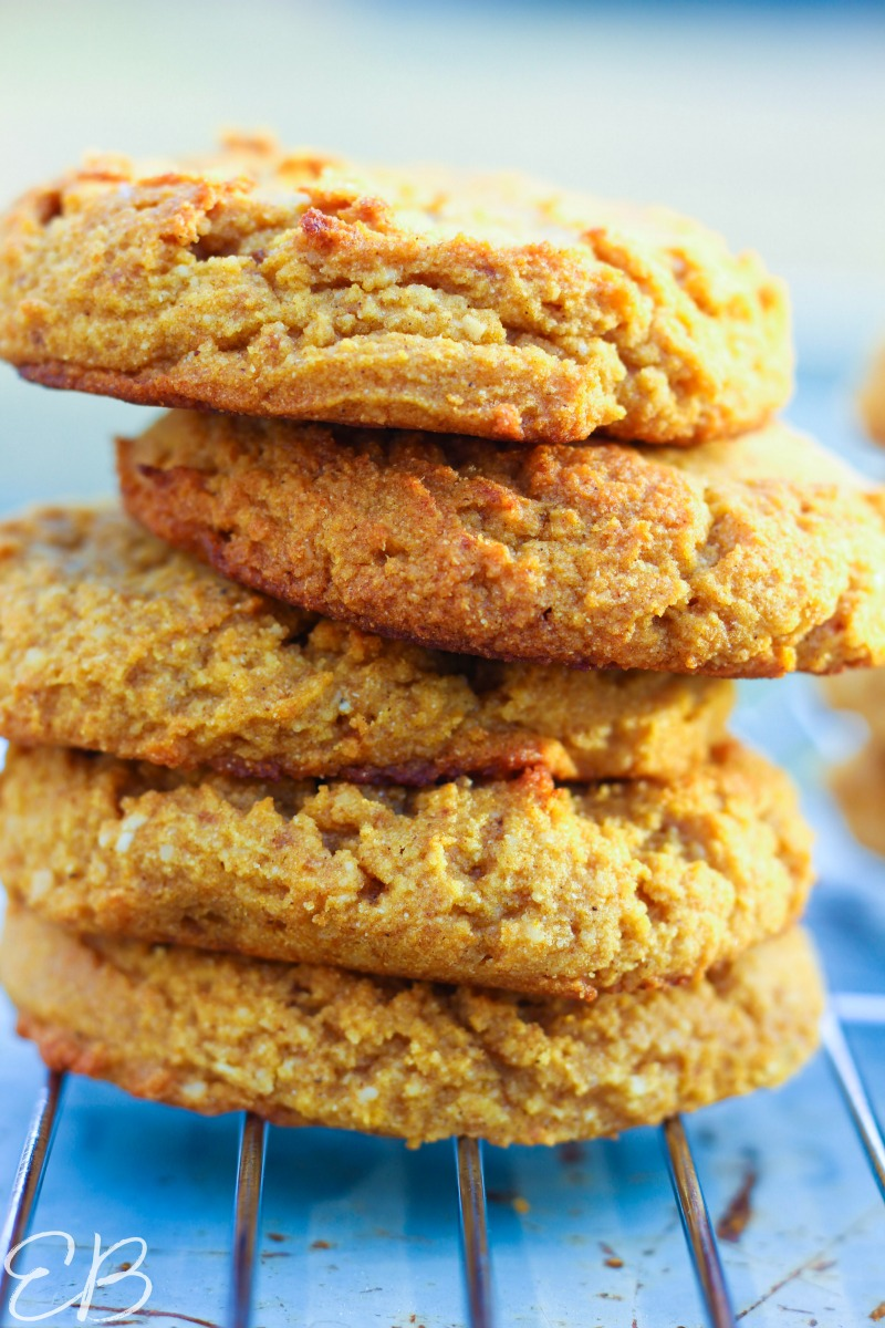 stack of aip pumpkin cookies