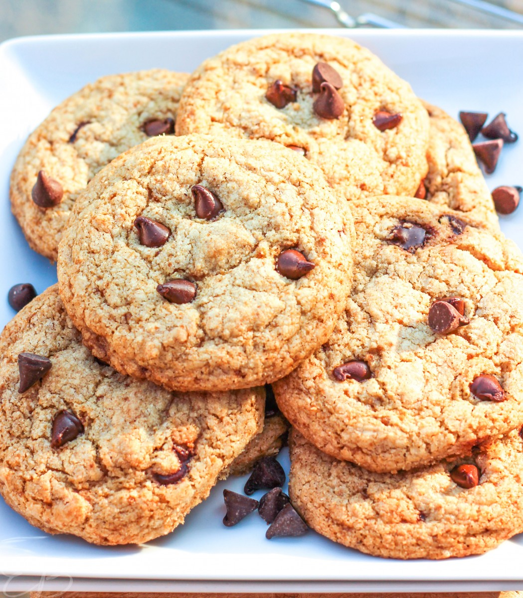 paleo aip chocolate chip cookies on white plate