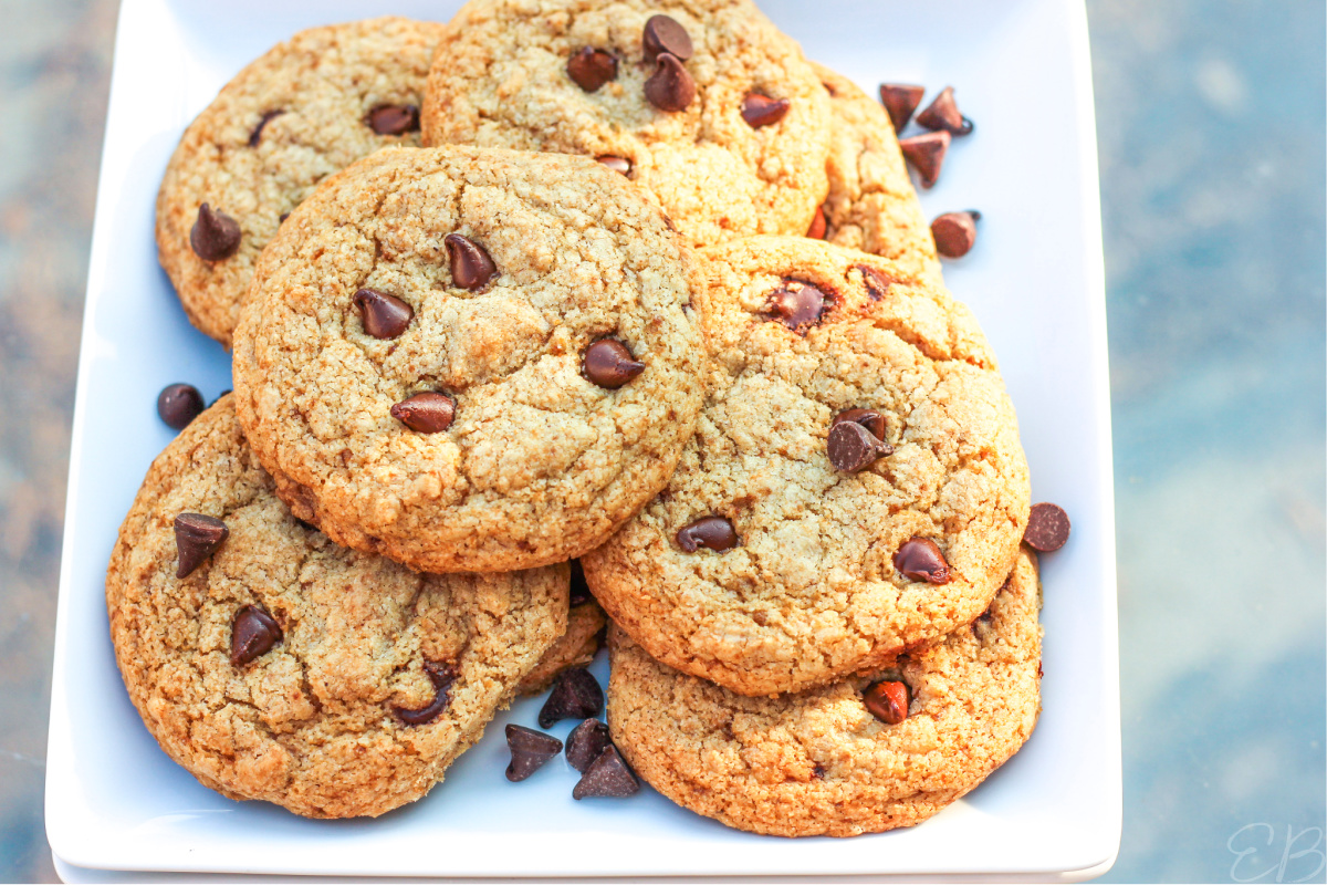 overhead view of paleo aip chocolate chip cookies