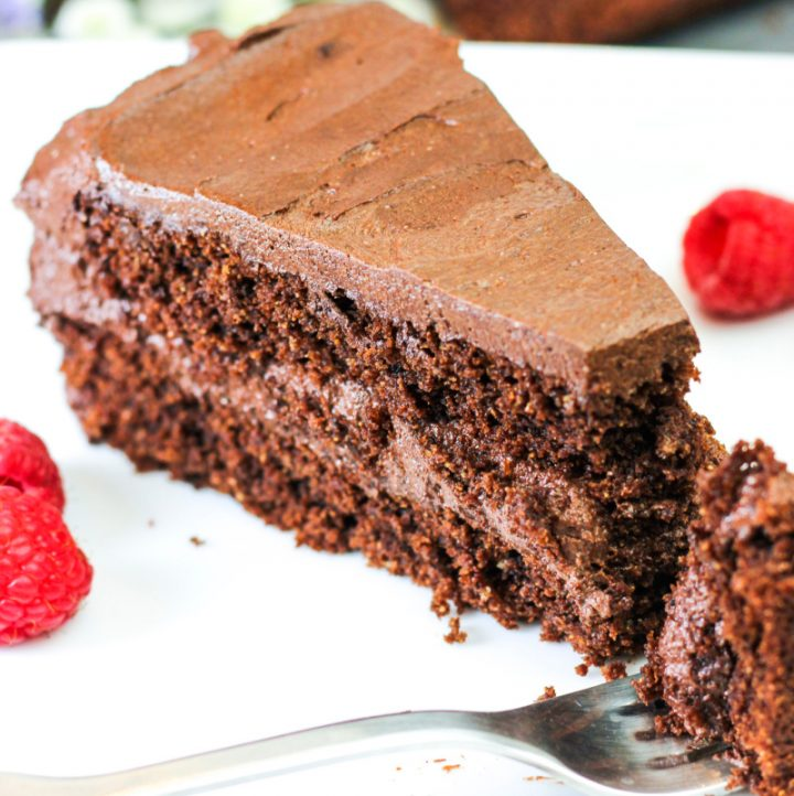 "single slice of aip ""chocolate"" cake"