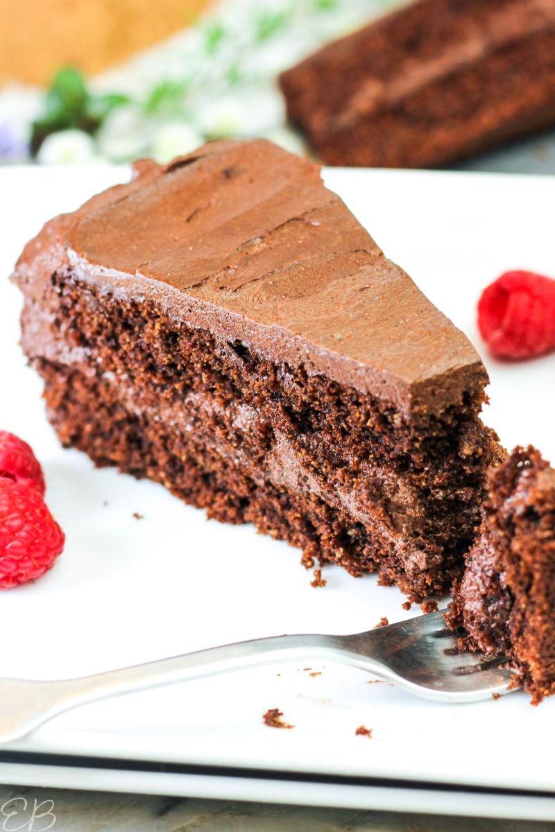 "single slice of aip ""chocolate"" cake"