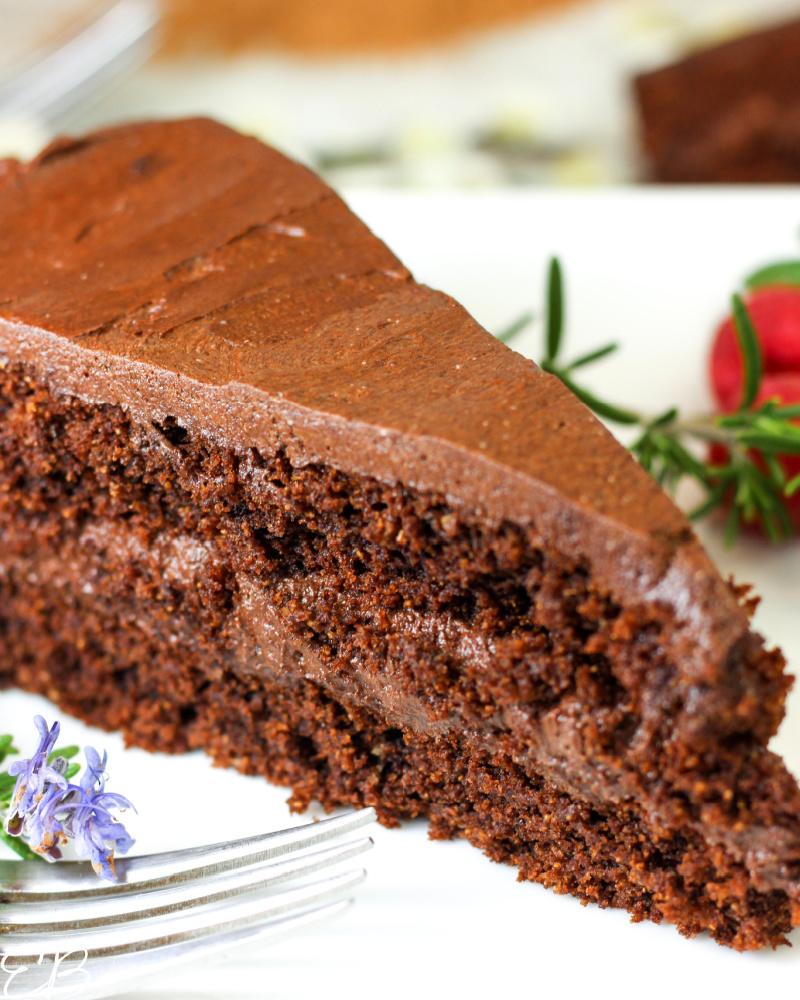 up close image of aip chocolate cake slice
