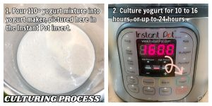 yogurt poured into instant pot for culturing