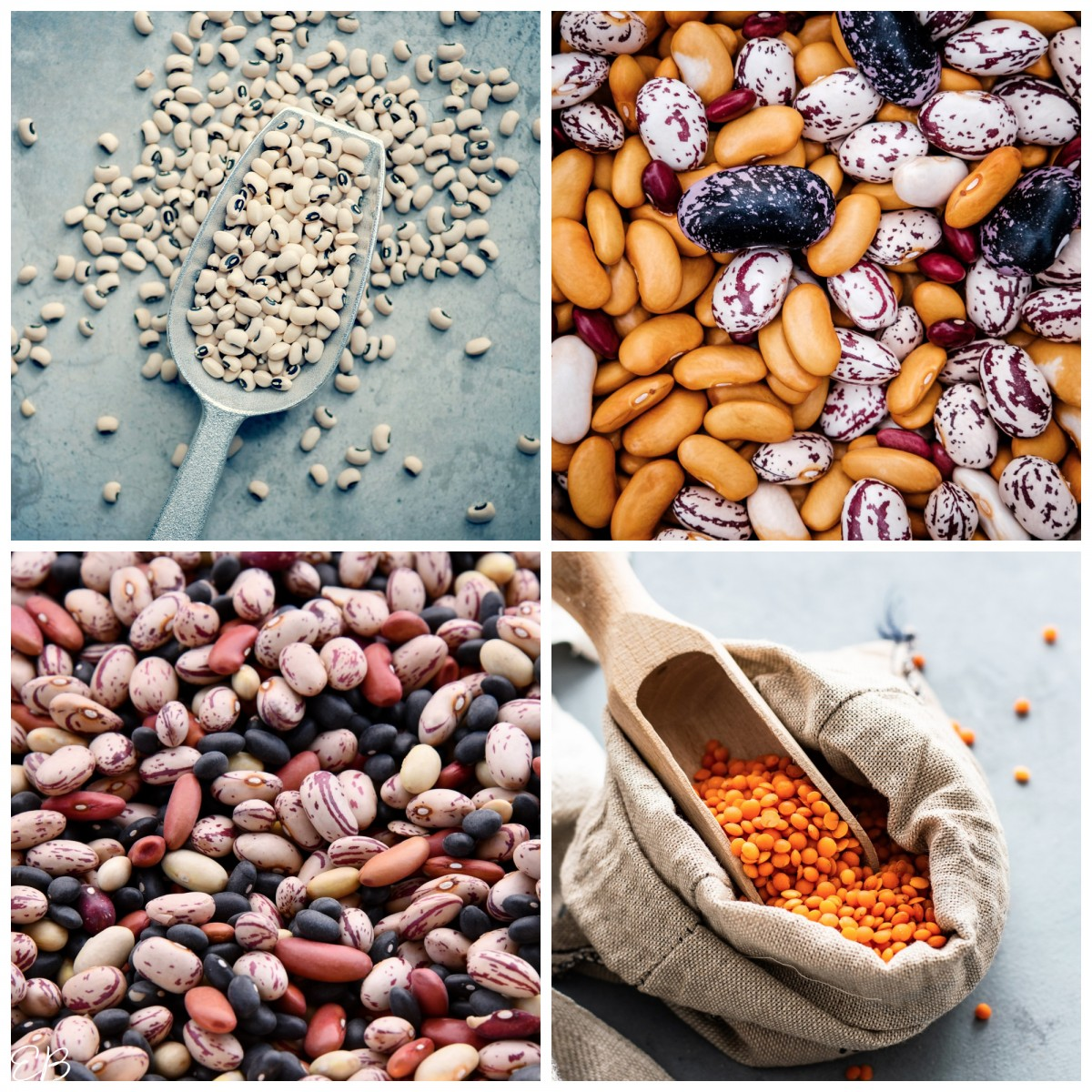 4 kinds of beans collaged