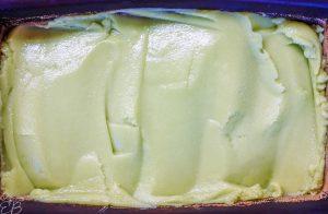 frozen avocado ice cream