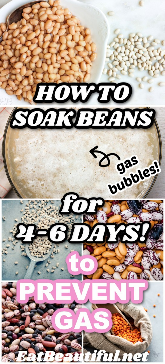 several images of beans and one of beans being soaked with gas bubbles on top