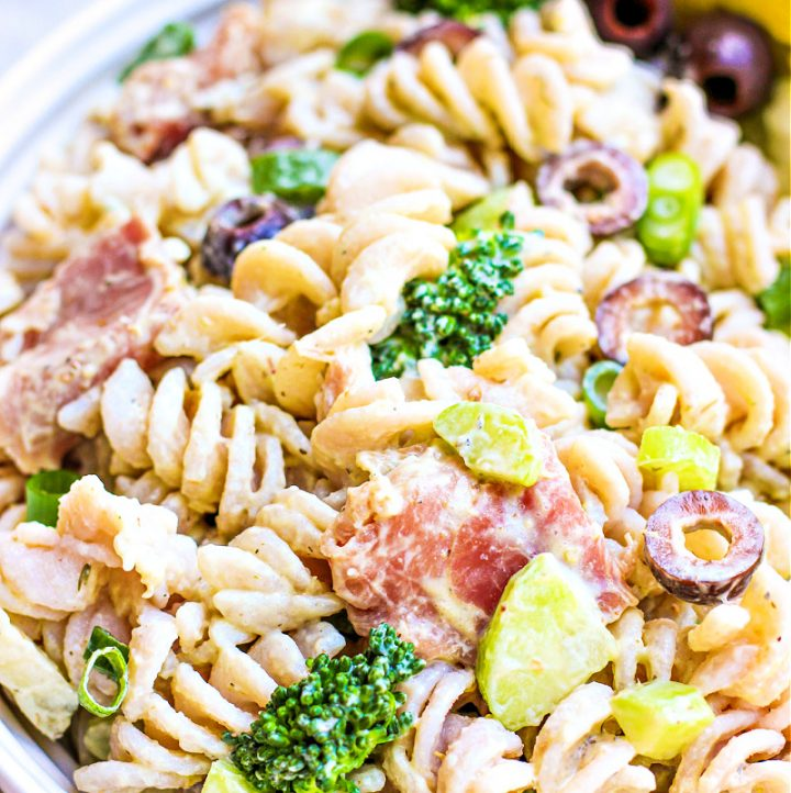side view of antipasto pasta salad