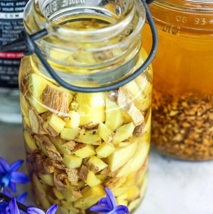 two jars of ginger tincture, one fresh and one with dried herb